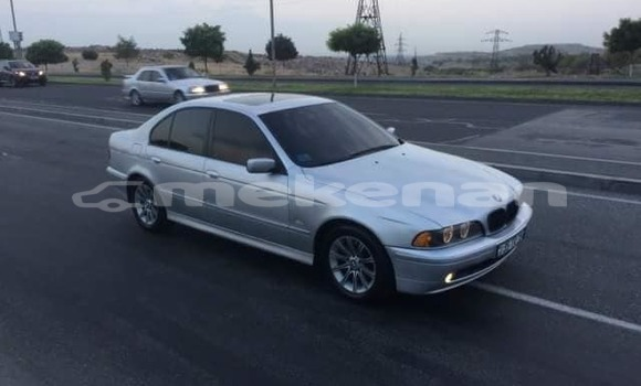 Buy Used BMW 5–Series Silver Car in Yerevan in Yerevan