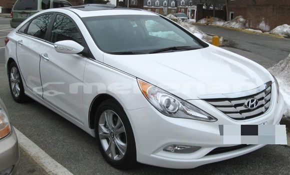 Buy Used Hyundai Sonata White Car in Yerevan in Yerevan
